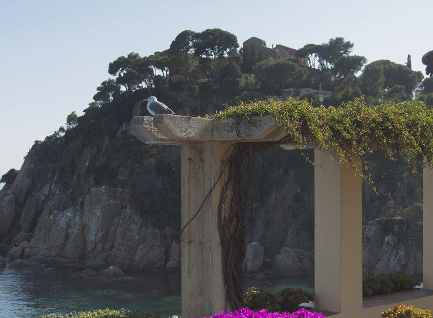 Botanische tuin Marimurtra