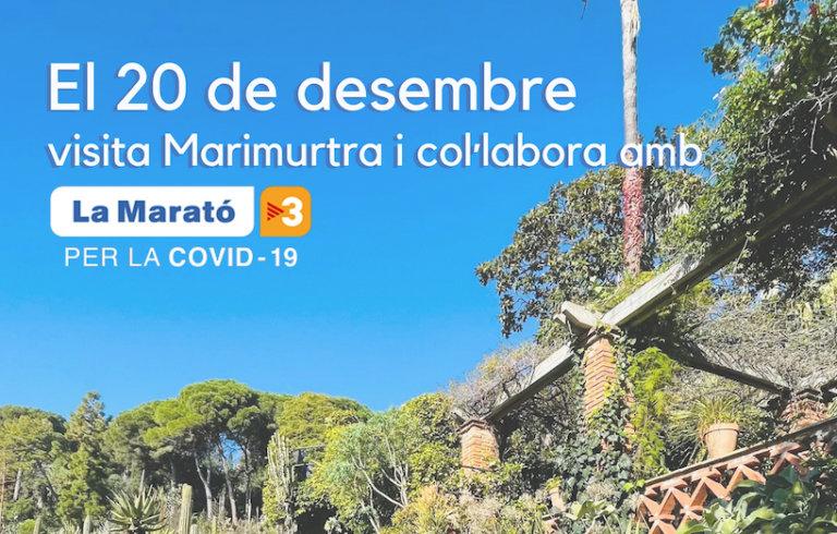 Visita Marimurtra el 20 de desembre i col·labora amb la Marató de TV3
